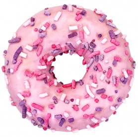 Wild Fruits Donut